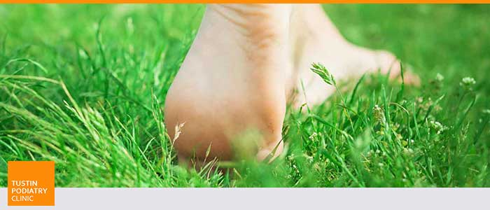 Key Questions to Ask Your Podiatrist